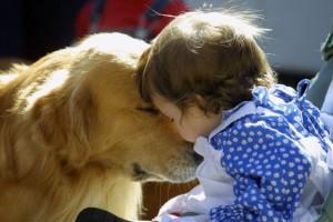 ゴールデンレトリバーと赤ちゃん