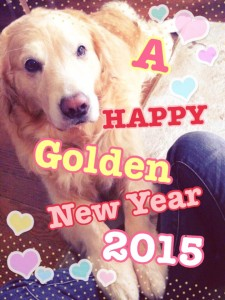 a happy golden new year!